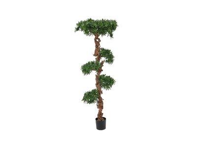 bonsai boom 180 cm